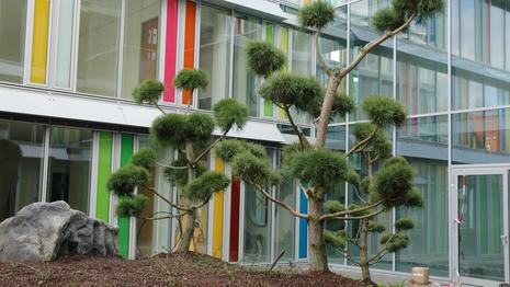 Startseite Marcel Nadorf Gmbh Hochwertige Gartengestaltung In